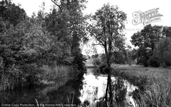 Photo of Wylye, The River Wylye c.1955