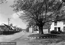 Wyre Piddle, The Arbour Oak c.1955