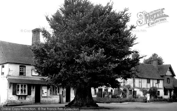 Photo of Yattendon, The Square And Old Elm Tree c.1950