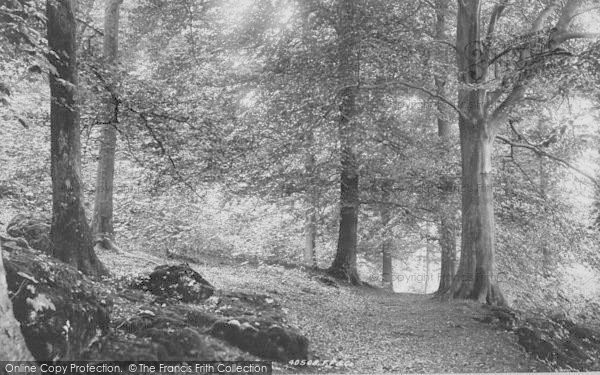 Photo of Yealand Conyers, Deepdale Woods 1897