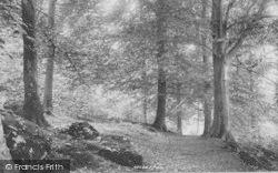 Yealand Conyers, Deepdale Woods 1897