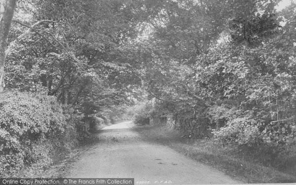 Photo of Yealand Conyers, Yealand Woods 1897