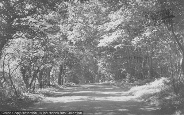 Photo of Yealand Conyers, Yealand Woods c.1955