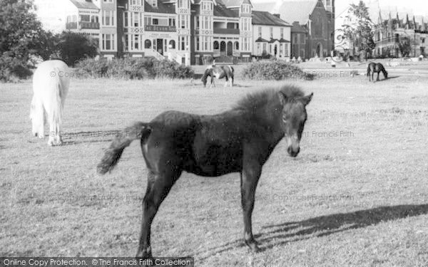 Photo of Yelverton, The Green c.1965