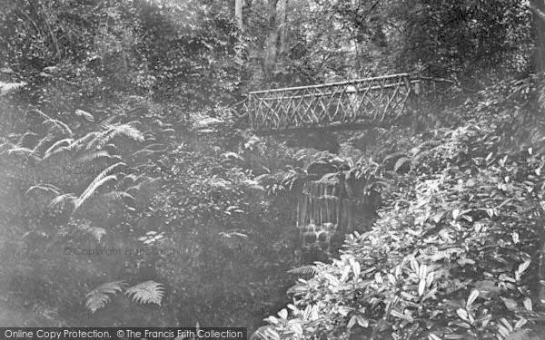 Photo of Yeovil, Nine Springs 1900