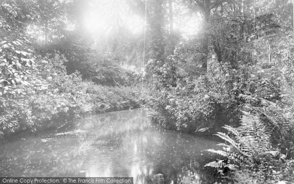 Photo of Yeovil, View At Nine Springs 1900