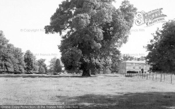 Photo of Yoxford, Grove Park c.1965