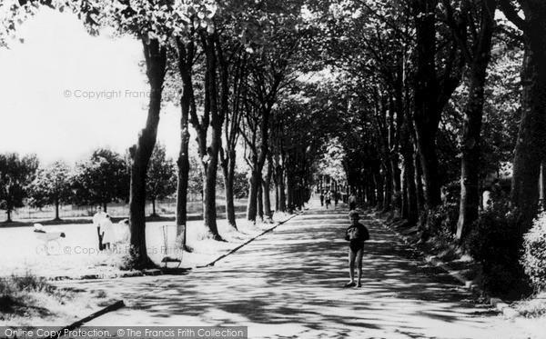 Photo of Ystrad, Long Walk, Gelligaled Park c.1960