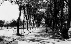 Ystrad, Long Walk, Gelligaled Park c.1960