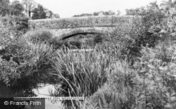 Zeal Monachorum, Hayne Bridge c.1960