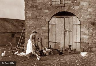 Lealholm, Barn Door Fowls, Lealholm Hall c1880