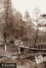 Sandsend, Mulgrave Woods c1880