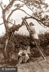 Whitby, Children in a Fruit Tree c1880
